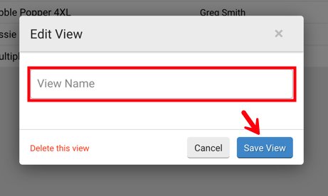 Edit View pop-op. Red box highlights the ​​View Name​ field and arrow points to ​Save View button.